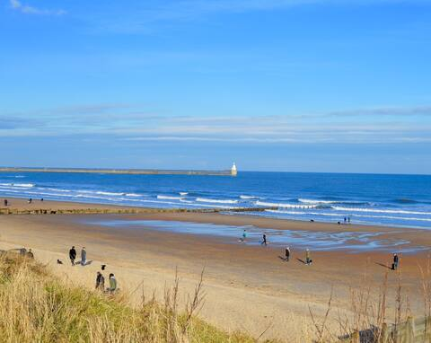 Beautiful Coastal Flat near Park, Beach & Harbour