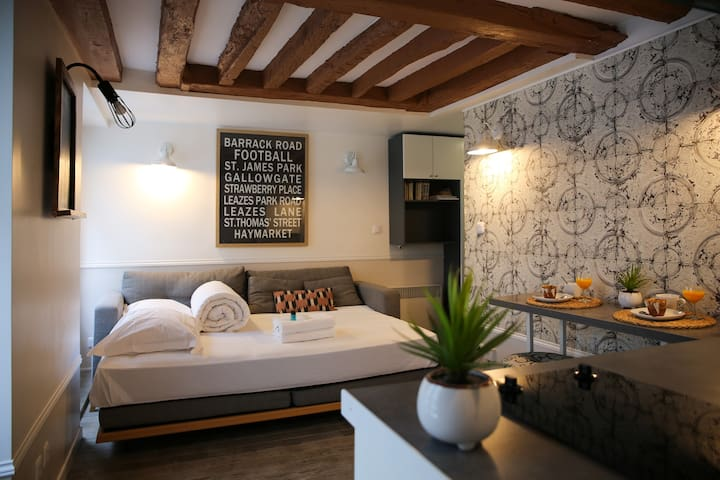 Lovely cocooning apartment in the old Paris !