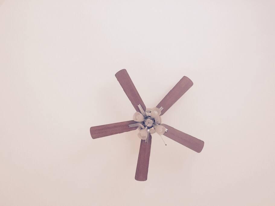 Ventilador de techo, también cuenta con aire acondicionado.