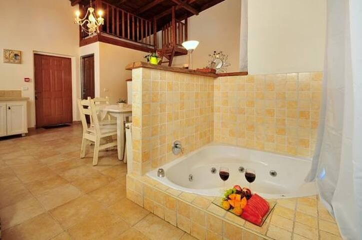 Adar Suites in the Golan - Suite