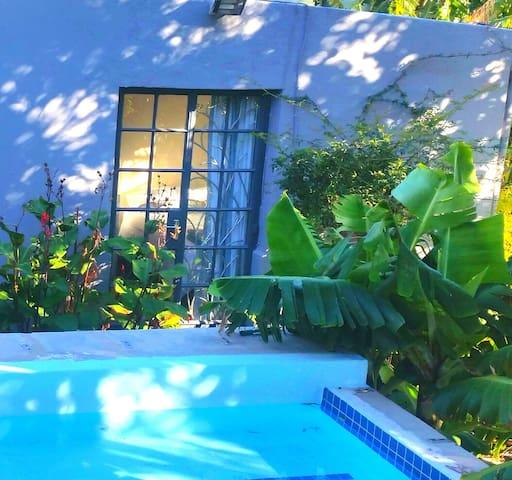 COSY CITY GARDEN STUDIO - Cape Town - House