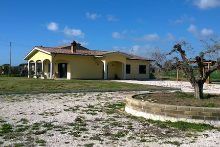 ART IN THE GREEN - Ladispoli - Bed & Breakfast