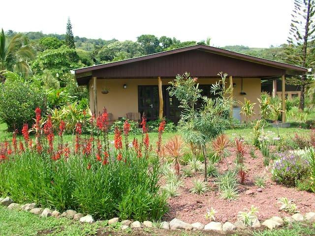 Garden of Eden - Piedras - House