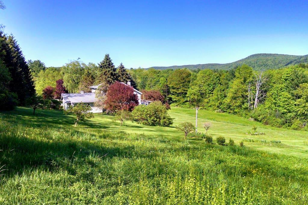 Sublime Berkshire views