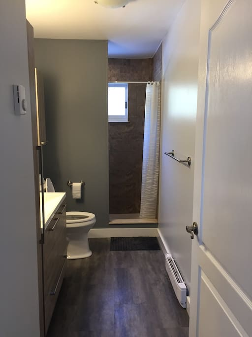 Main floor bathroom with full shower