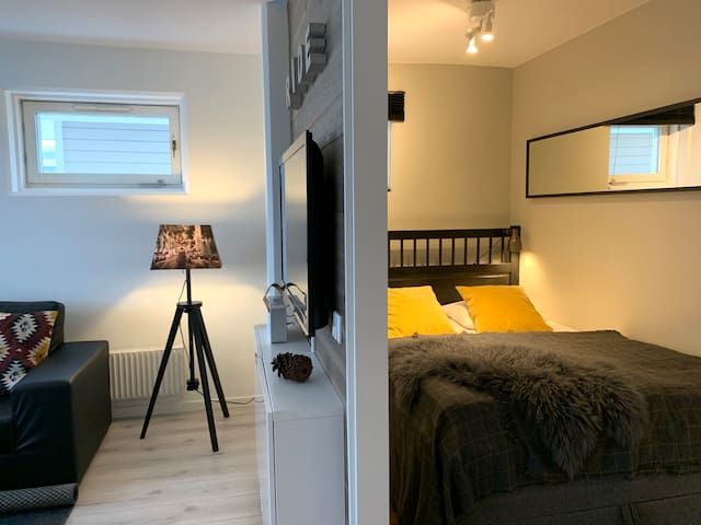 Bedroom and livingroom