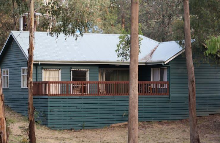 Kibo Cottage dans la neige - Sawmill Settlement