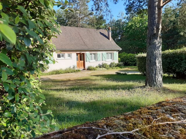 Maison sur grand terrain boisé