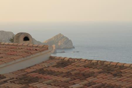 Gaviota Cabo de la Nao - Jávea