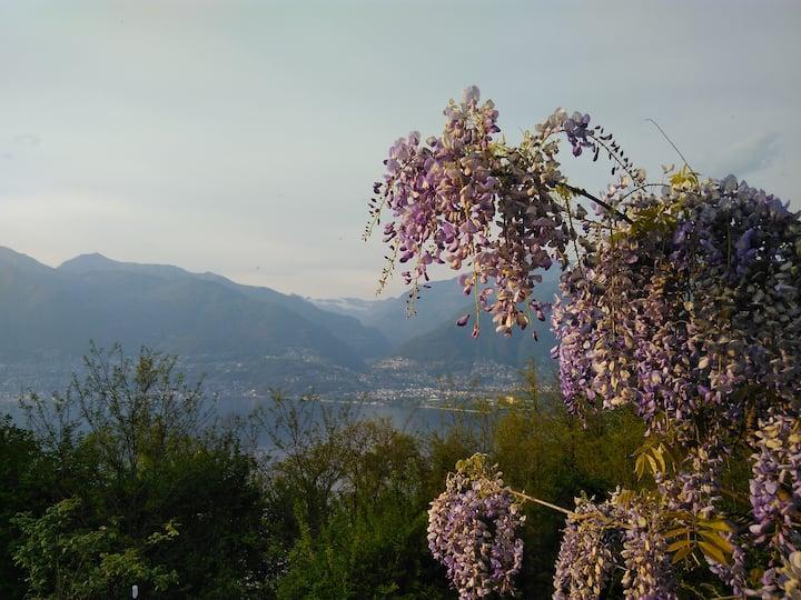 Sun, fun & relax, il Ticino che fa per voi!