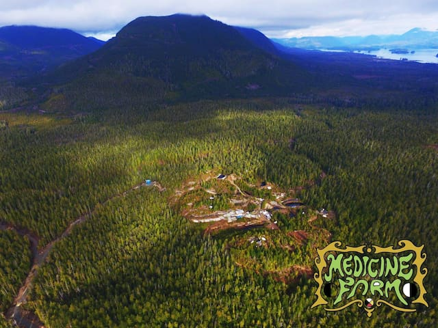 Experience Off-grid Beyond Organic Medicine Farm