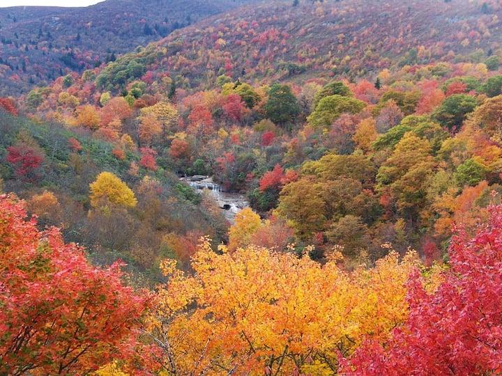 Beautiful Cozy Mountain Retreat