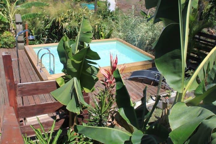 Villa vert Bambou, piscine