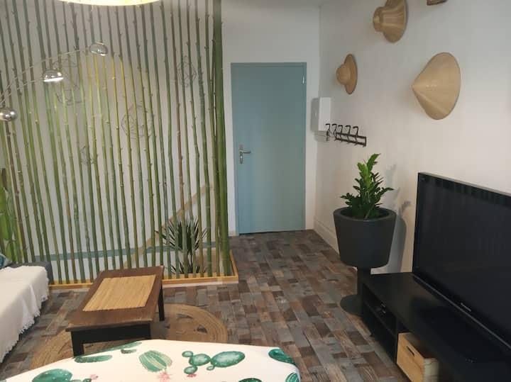 """Appartement """"Bambou"""" en duplex au coeur d'Agen"""