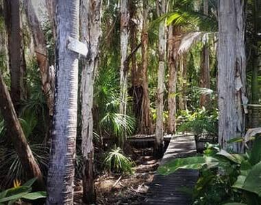 Direct Access -Beach 200 mts 5 on Palms