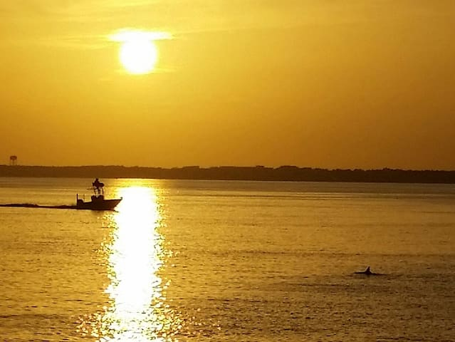 Ask about our Sun Set and Live Like the Local Cruises available.