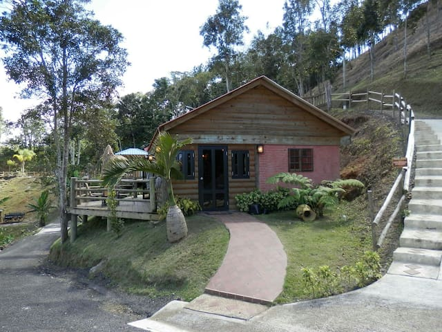 Rustic Log Cabins w/Pool Sleeps 1-6 - Orocovis - Casa de campo