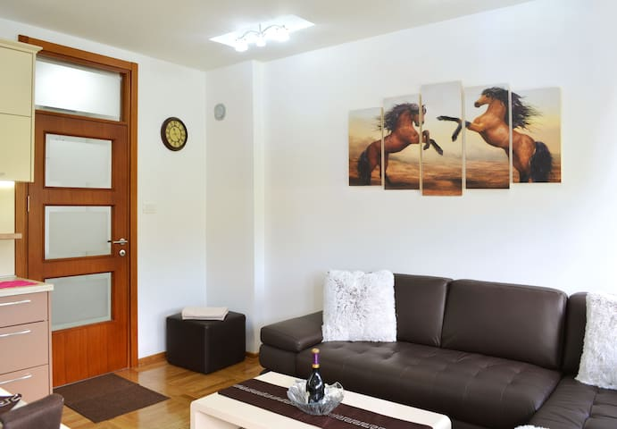 Royal Capital Apartment - Cetinje - Daire