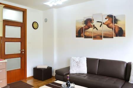 Royal Capital Apartment - Cetinje - Appartement