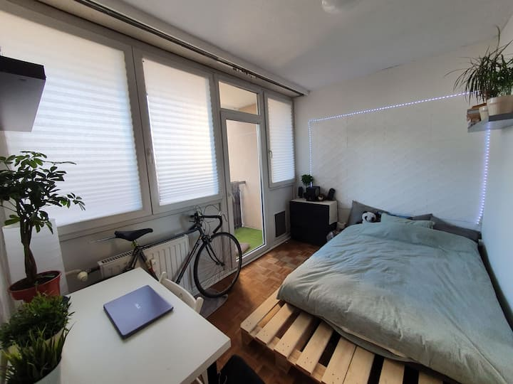 Budget Double room with Balcony in Green Budapest