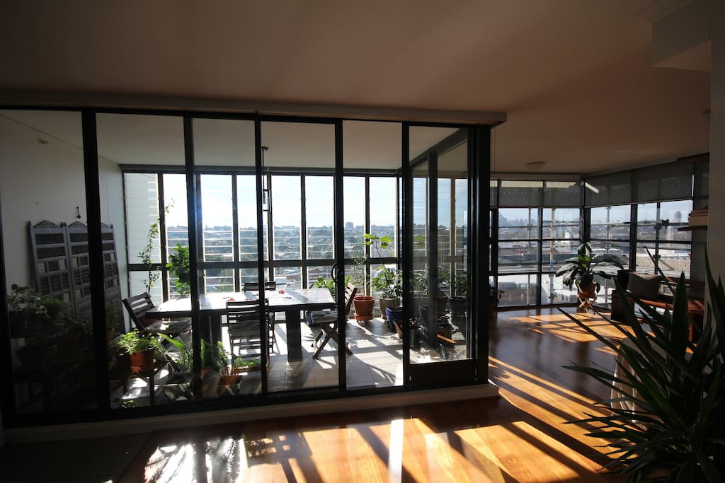 Our spacious sunroom and living room drenched in afternoon light