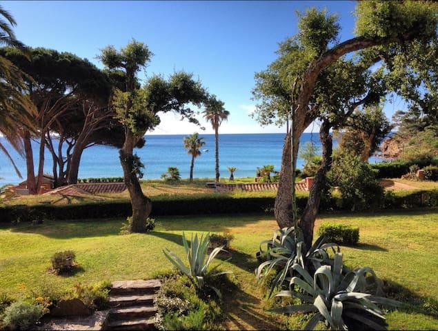 Appart bord de mer Pramousquier, piscine,Tennis... - Le Lavandou - Departamento