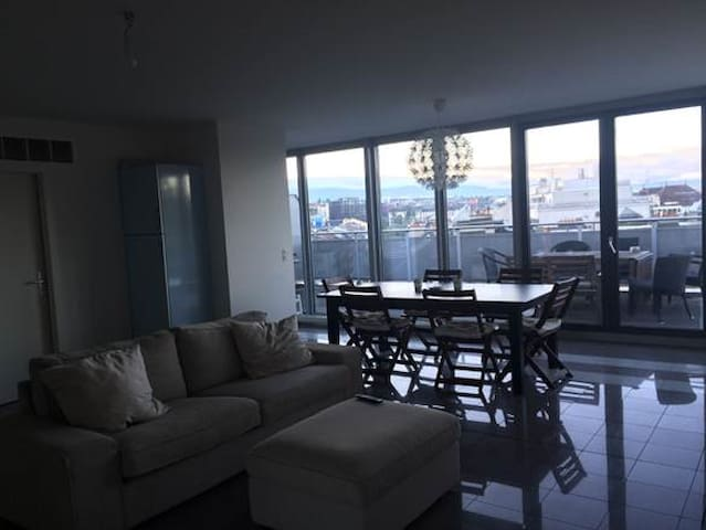 Penthouse room in Central Geneva - Genève - Apartment
