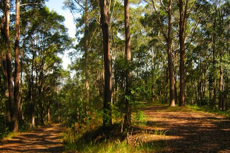 Nature Lovers Getaway - Nourishing Naturism - Yandina Creek