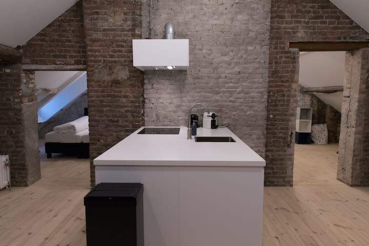 """New Loft (60m2) directly on the """"Maas"""""""