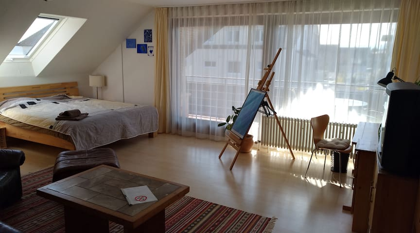 A nice and bright appartment, with all you need. - Kusterdingen - Leilighet