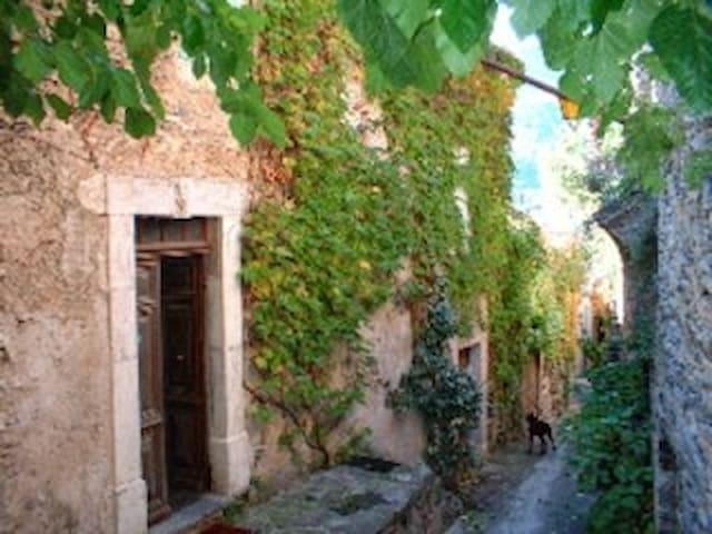 La maison d'Aimée - Vieussan - Huis