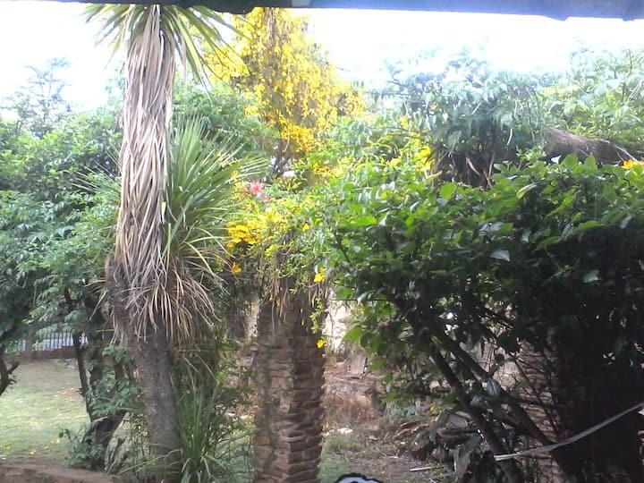 Serendipity in Soul Gardens