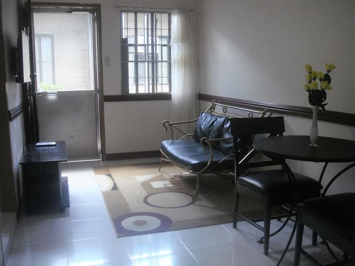 FAST WIFI Apartment CLOSE TO FIELDS AND BARS!!!!