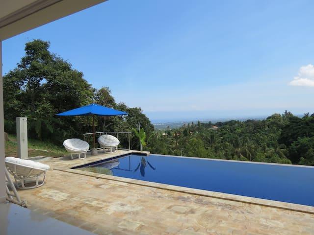 Twin king Beds in our 5 Star Luxury Villa (2) - Buleleng - Bed & Breakfast