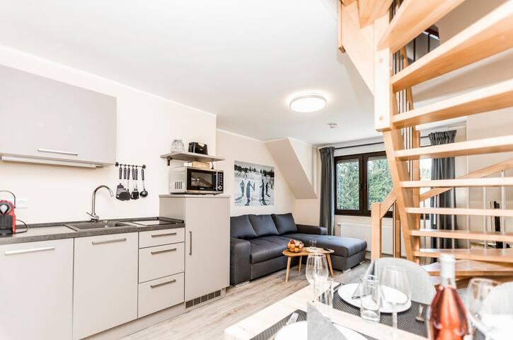 Ferienwohnung/App. für 4 Gäste mit 44m² in Winterberg (121009)