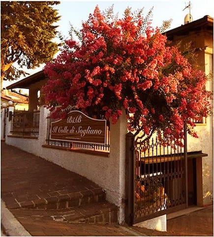 B&B Il Colle di Sogliano - Sogliano Al Rubicone - Villa