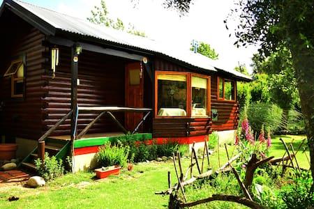 Alquiler en Bariloche! cabaña 2pax con jacuzzi! - San Carlos de Bariloche - House