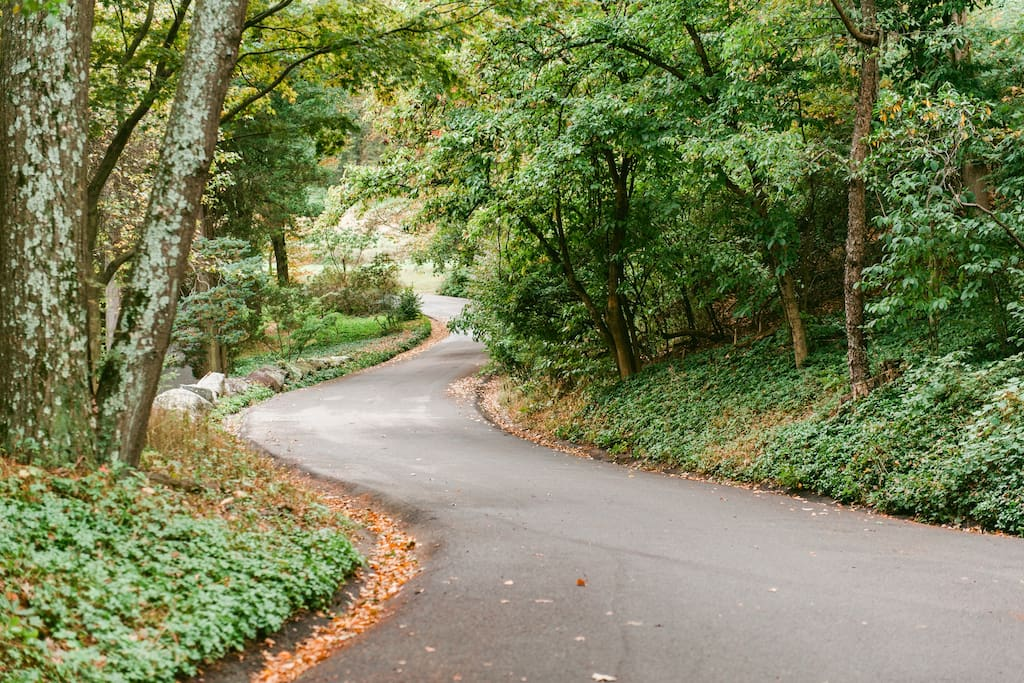 The winding drive to The Farmhouse