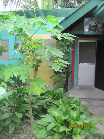 Villa 301 B&B - Basic Apartment - Baclayon, Bohol - Daire