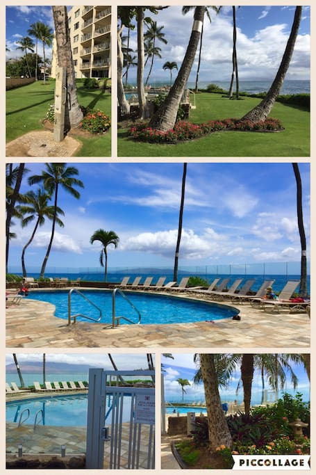 Oceanfront pool nestled between Kamaole I and II beaches, lush lawn & showers