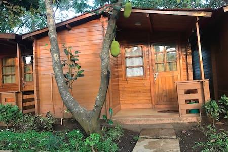 2.Baga Cottages-2min close to beach - Baga  - 住宿加早餐