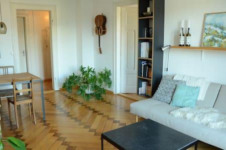 Altbauwohnung mit Bergsicht - Kriens - 公寓