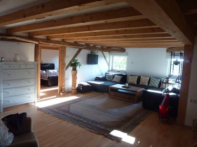 gemütliche große wohnung in Dorfrandlage - Ursberg - Apartment