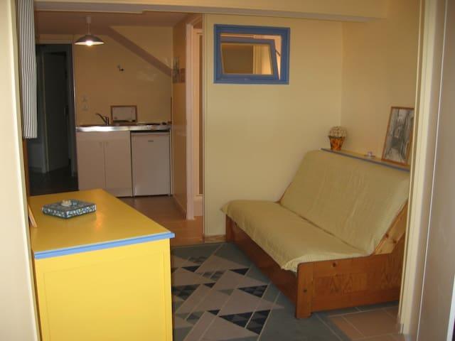Studio calme dans jolie villa à St Genis-Laval.