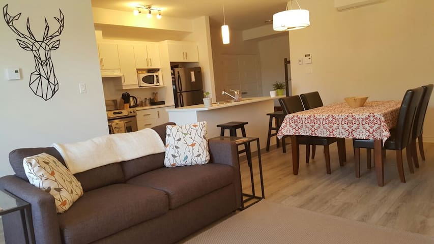 Cozy and Modern Condo close to Downtown Ottawa - Gatineau - Appartement
