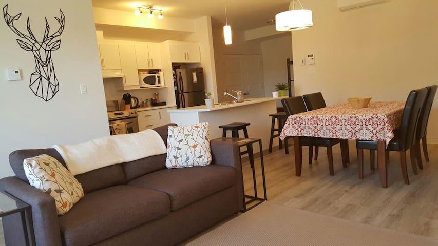 Cozy and Modern Condo close to Downtown Ottawa - Gatineau - Appartamento