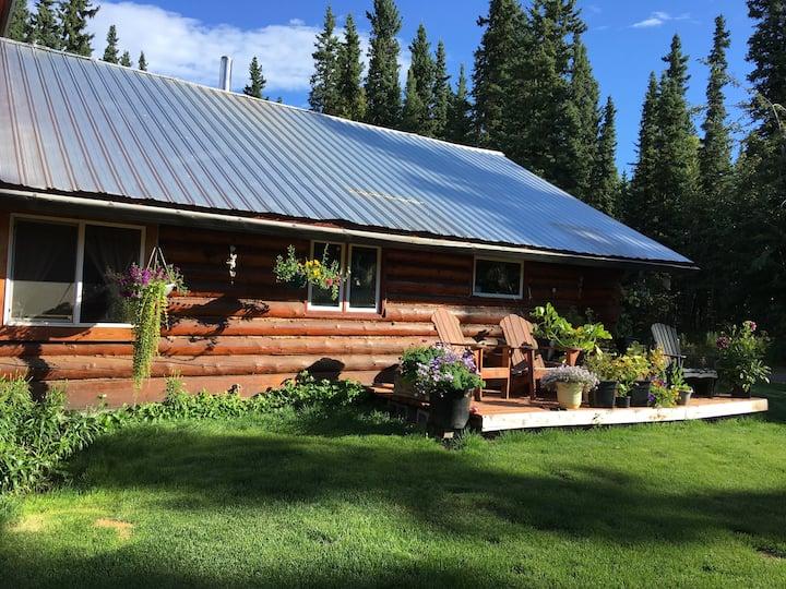 Scandinavian Lodge. Beautiful cabin to see Auroras