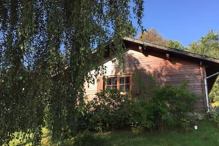 Haus Frei Wald nabij Winterberg, skigebied. - Bromskirchen - バンガロー