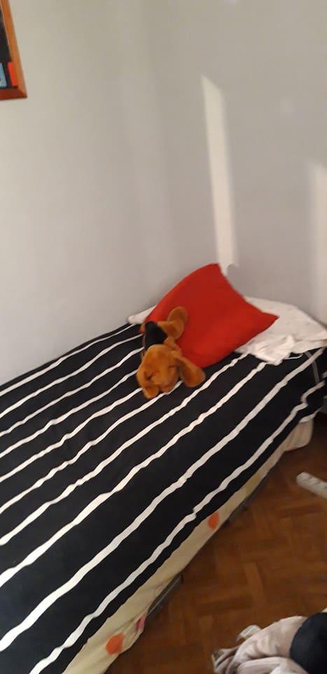 HABITACION individual, con una cama, posibilidad de otra cama en la habitación,tranquila, y ambiente confortable y agradable en la vivienda