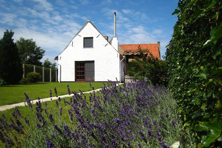 Beautiful Farmhouse in Beveren-aan-den-IJzer with Terrace